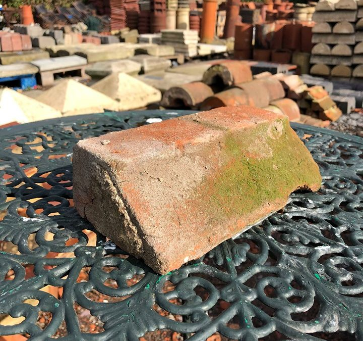 Reclaimed Soft Red Plinth Brick Tops